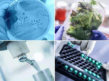 生命科学,抗菌食品,医疗设备制药