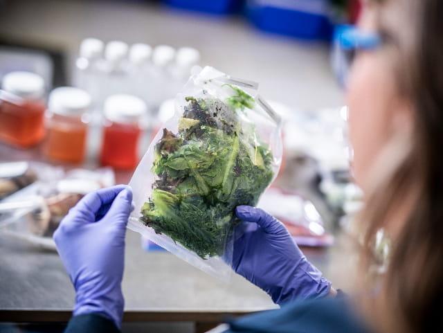 """关于FDA的""""智能食品安全新时代""""蓝图,你需要知道什么"""
